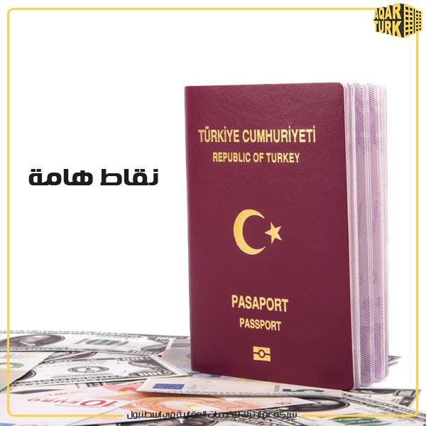 turkish ciitizenship